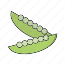 beans, peas, vegetable icon