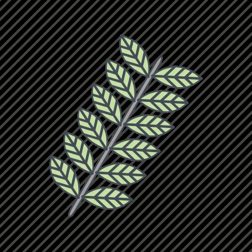 grain, plant, wheat icon