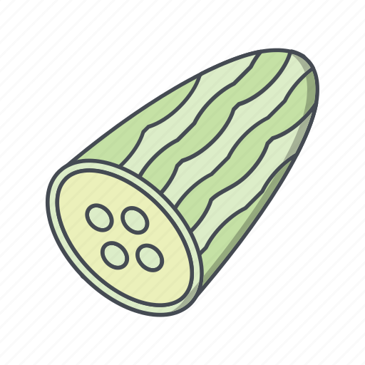 cucumber, salad, vegetable icon