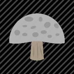 food, healthy, mushroom, mushrooms, organic, oyster icon