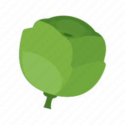 cabbage, food, fresh, green, salad, vegetable, vegetables icon