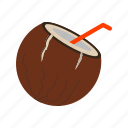 coconut, drink, food, fruit