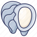 oyster, seafood, shell icon