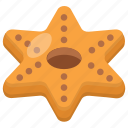 biscuit, brownie, chocolate cookie, cookie, star cookie icon