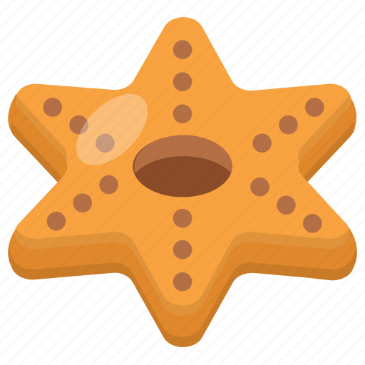 biscuit, brownie, chocolate cookie, cookie, star cookie icon