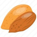 almond, almond nutrition, dry fruit, nut, roasted almonds icon