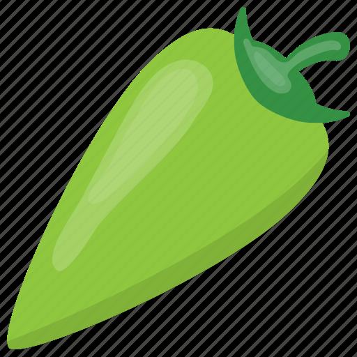 chili pepper, green chili, hot chili, spice, vegetable icon
