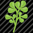 fenugreek, fenugreek leaves, green vegetable, indian cuisine, leafy vegetable icon