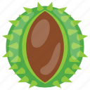 custard apple, sharifa, sugar apple, sugar apple fruit, tropical vegetable icon