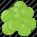 baby pumpkin, green vegetable, indian vegetable, round gourd, round melon icon