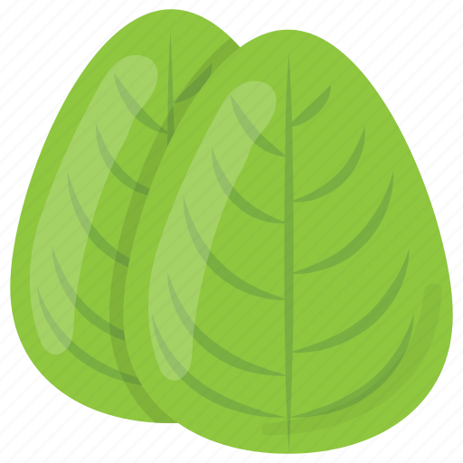 green leaves, green vegetable, spinach, spinach leaves, vegetable icon