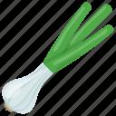 allium sativum, food, garlic springs, raw garlic, spice icon