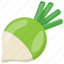 diet food, natural diet, root vegetable, turnip, vegetable icon
