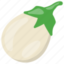 aubergine, brinjal, eggplant, organic food, vegetable icon