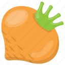food, natural diet, root vegetable, turnip, vegetable icon