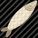 fish, raw fish, sea animal, seafood, whole fish icon