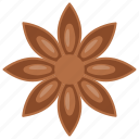 badian, chinese star anise, illicium, star anise, star anise seed icon