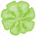 cucumber, cucumber flower design, cucumber slices, presenting food, salad making icon