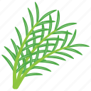 decorative herb, edible rosemary, pest control herb, rosemary, woody herb icon
