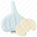 cooking ingredient, garlic bulb, garlic clove, traditional food, unripe garlic, vegetable icon
