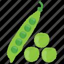 green vegetable, healthy diet, legume, peas, vegetable icon
