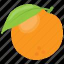 citrus, citrus fruit, diet, orange, pulpy fruit icon