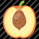 juicy fruit, peach, peach juice, prune fruit, pulpy fruit icon