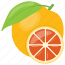 citrus, citrus fruit, diet, orange, pulpy fruit, slice icon