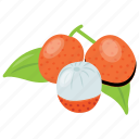 healthy food, lychee, lychee tree, pulpy fruit, scented fruit icon