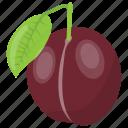 fleshy fruit, healthy fruit, plum, prune fruit, purple fruit icon