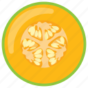 fleshy fruit, healthy fruit, melon, muskmelon, pepo icon