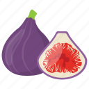 common figs, dried figs, fig, mulberry, purple figs icon