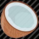 coconut, healthy food, milky fruit, nut, tropical food icon