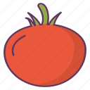 food, tomato, vegetables icon