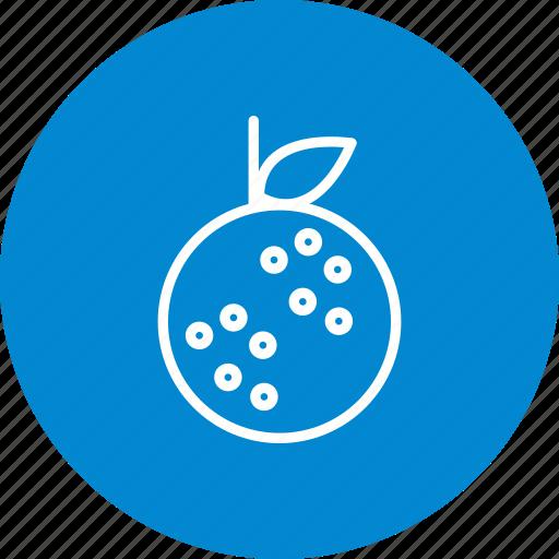 citrus, fruit, healthy, juice, orange icon