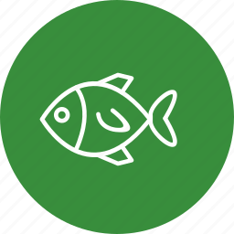 fish, sea food, snapper icon
