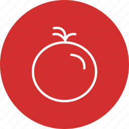 fruit, ketchup, tomato icon