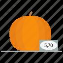 farm, harvest, market, nutritious, orange, price, pumpkin icon