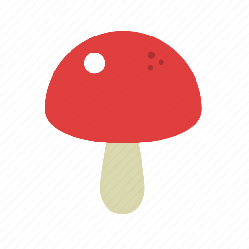 fungi, fungus, mushroom, vegetable icon