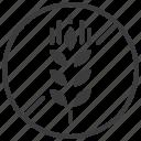 wheat, gluten, no, food, forbidden, prohibited