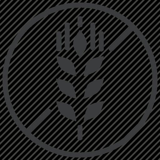 food, forbidden, gluten, no, prohibited, wheat icon