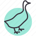 bird, duck, farm, livestock, poultry icon