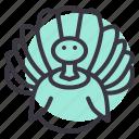 bird, farm, poultry, thanksgiving, turkey