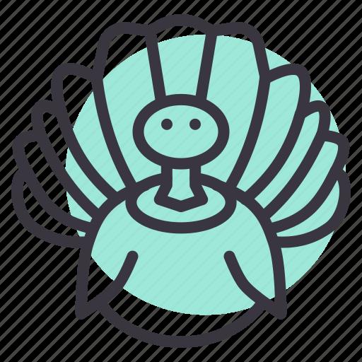 bird, farm, poultry, thanksgiving, turkey icon