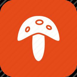 food, fungi, mushroom, mushrooms, plant, vegetable icon