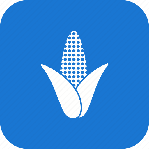 corn, food, healthy, maize, plant, popcorn, vegetable icon