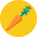 carrot, food, vegetable