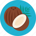 coconut, cocoa, food