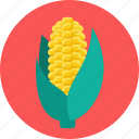 corn, food, meal icon