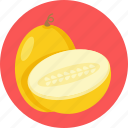 food, fruit, melon icon